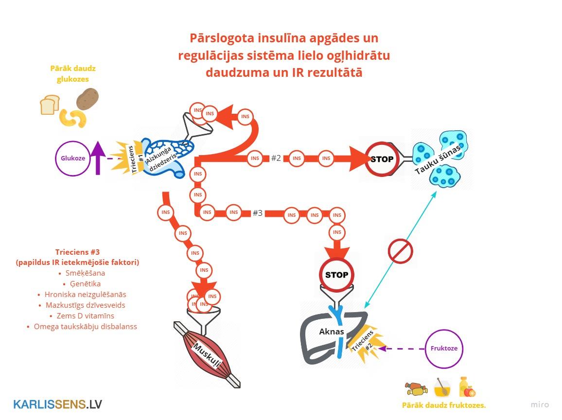 Kā iestājas insulīna rezistence